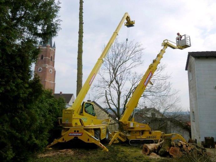 Bäume fällen unter Platzmangel