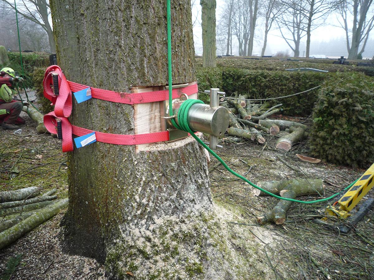 Abseiltechnik für schwere Baumteile